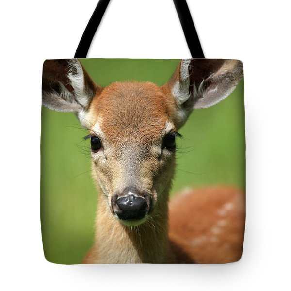 Bambi Tote Bag by Karol Livote