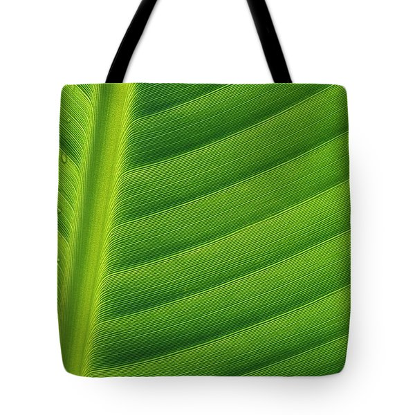 Banana Musa Sp Close Up Of Leaf Tote Bag by Cyril Ruoso