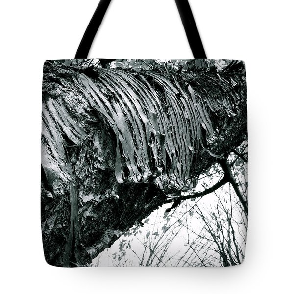 Barking Up At The Sky Tote Bag by Trish Hale