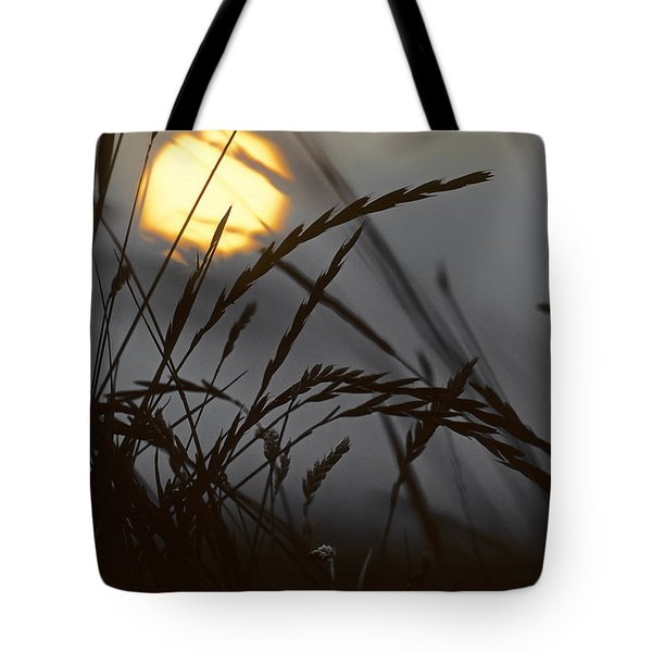 Barley Sunrise Tote Bag by Nigel Forster