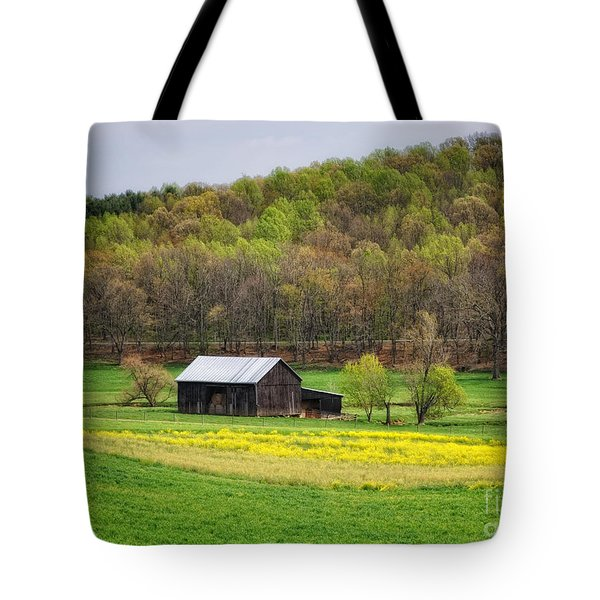 Barn In The Hollar Tote Bag by Pamela Baker