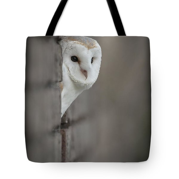 Barn Owl Tote Bag by Andy Astbury