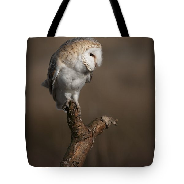 Barn Owl On The Lookout Tote Bag
