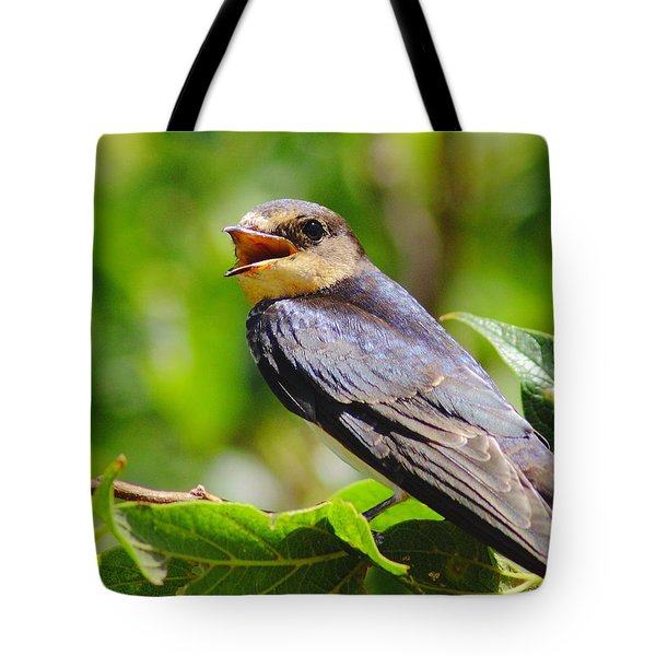 Barn Swallow In Sunlight Tote Bag by Robert Frederick