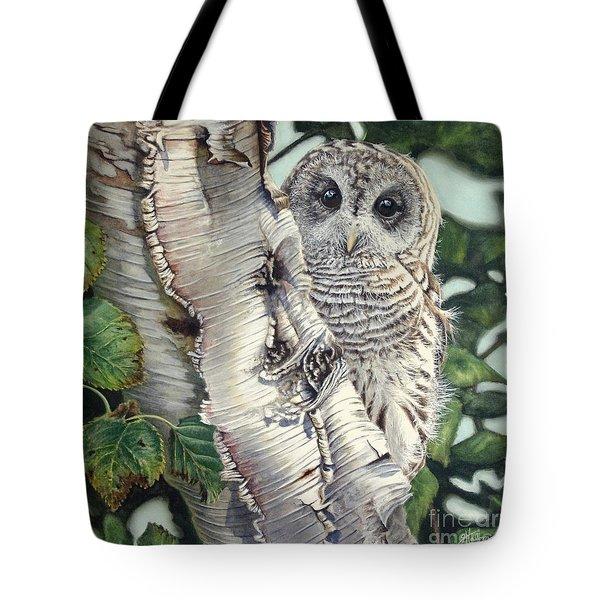 Barred Owl II Tote Bag