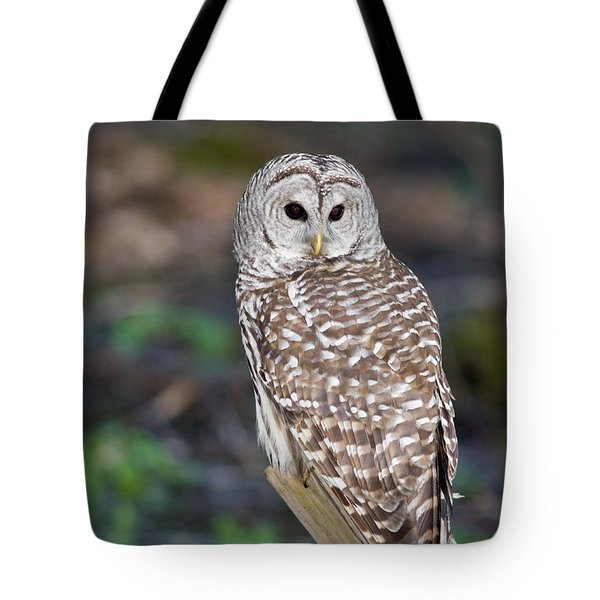 Tote Bag featuring the photograph Barred Owl by Les Palenik