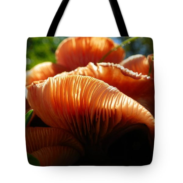Bathed In Glorious Light Tote Bag