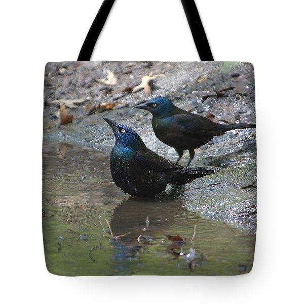 Bathing Partners Tote Bag by Sarah McKoy