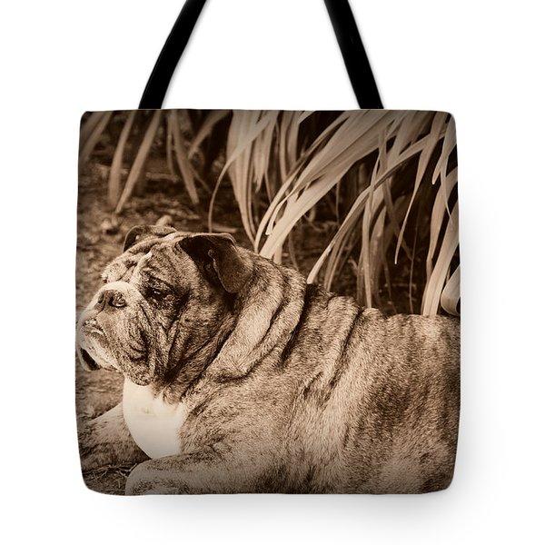 Baydie Tote Bag by Jeanette C Landstrom