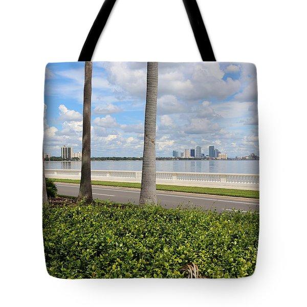 Bayshore Through Palms Tote Bag by Carol Groenen