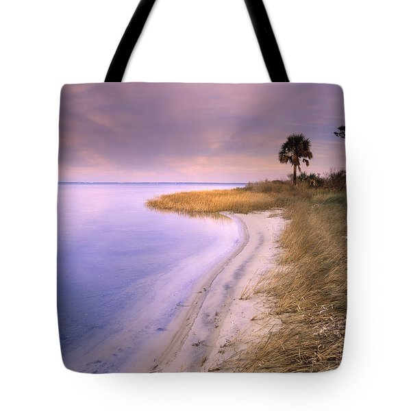 Beach Along Saint Josephs Bay Florida Tote Bag by Tim Fitzharris