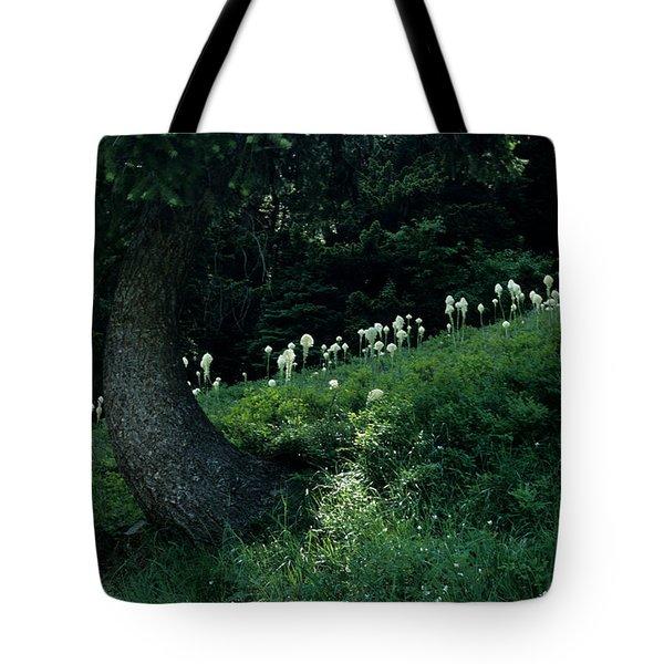 Bear-grass Ridge II Tote Bag by Sharon Elliott
