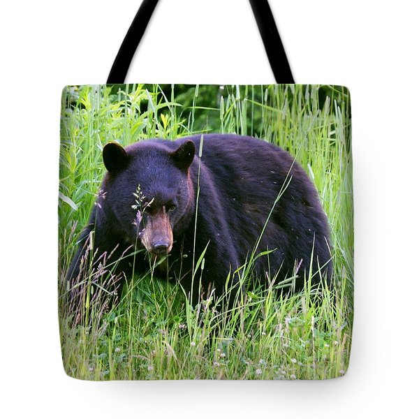 Tote Bag featuring the photograph Bear On The Hillside by Myrna Bradshaw