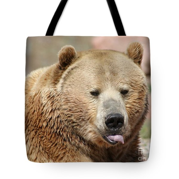 Bear Rasberry Tote Bag by Living Color Photography Lorraine Lynch