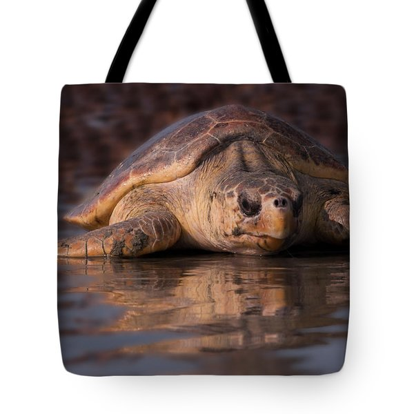 Beaufort The Turtle Tote Bag by Susan Cliett