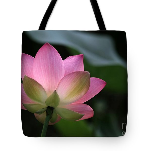 Beautiful Backlit Lotus Tote Bag by Sabrina L Ryan