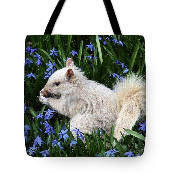 Beautiful Blue Eyes Tote Bag by Doris Potter