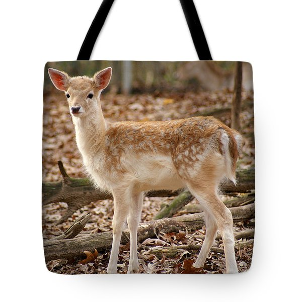 Beautiful Fawn Tote Bag by Jean Haynes