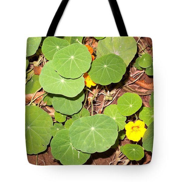 Beautiful Round Green Leaves Of A Plant With Orange Flowers Tote Bag