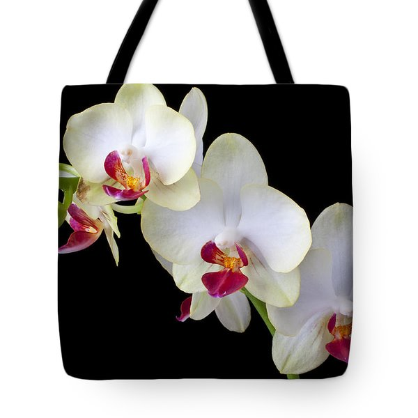 Beautiful White Orchids Tote Bag by Garry Gay