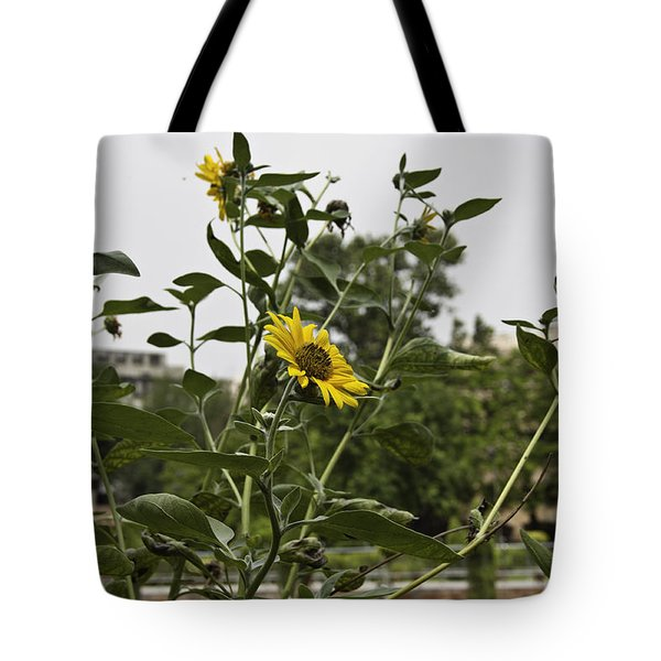 Tote Bag featuring the photograph Beautiful Yellow Flower In A Garden by Ashish Agarwal