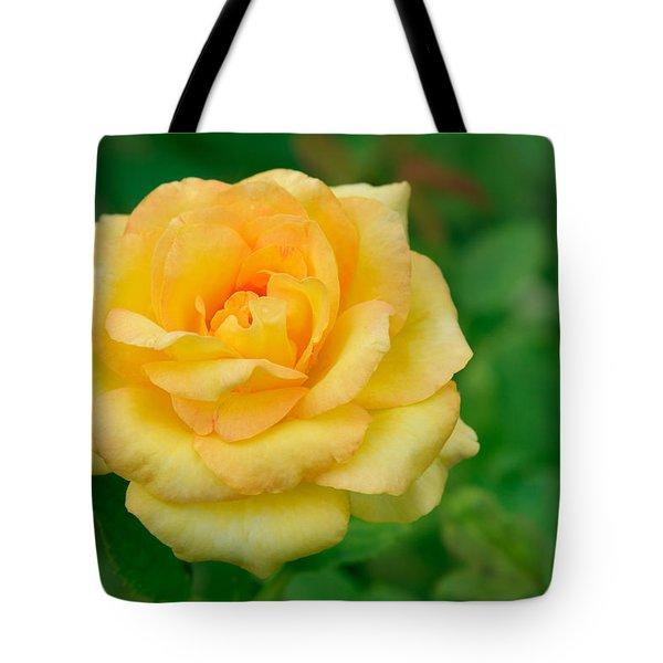Beautiful Yellow Rose Tote Bag by Atiketta Sangasaeng