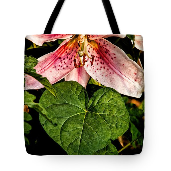 Beauty Tote Bag by Christopher Holmes