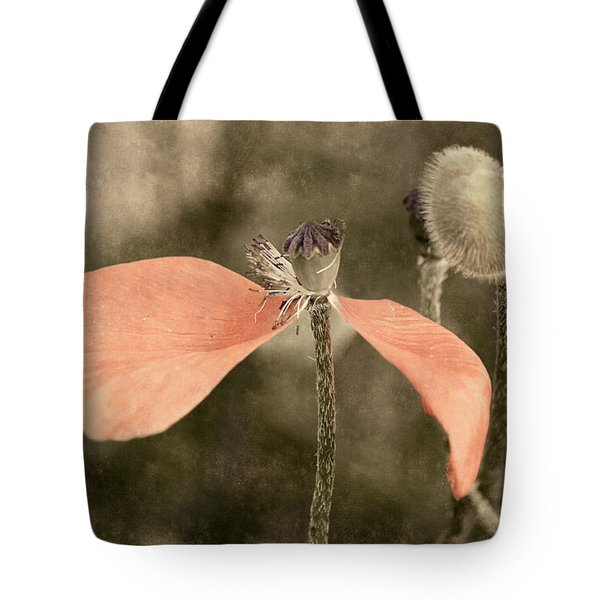 Beauty Fades Tote Bag by Bill Pevlor