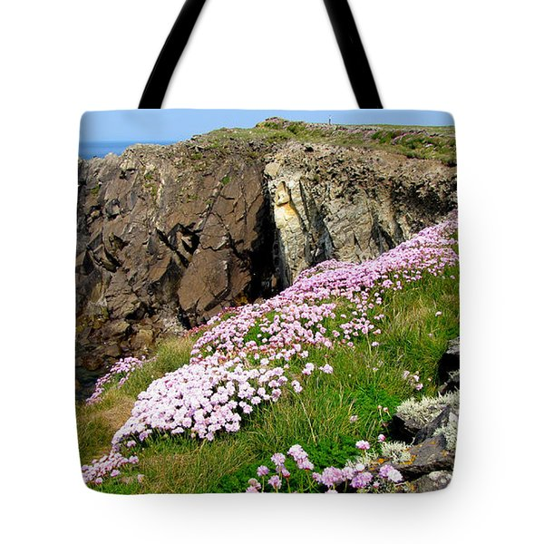 Beauty In Kerry Tote Bag by Barbara Walsh
