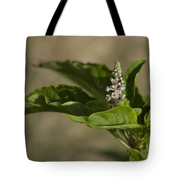 Beauty Of A Wildflower Tote Bag by Deborah Benoit