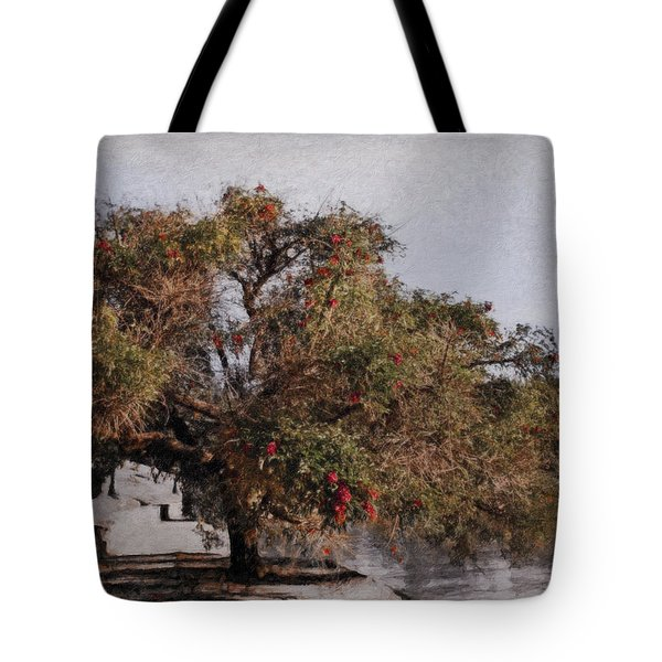 Beauty On The Path Tote Bag by Diane Dugas