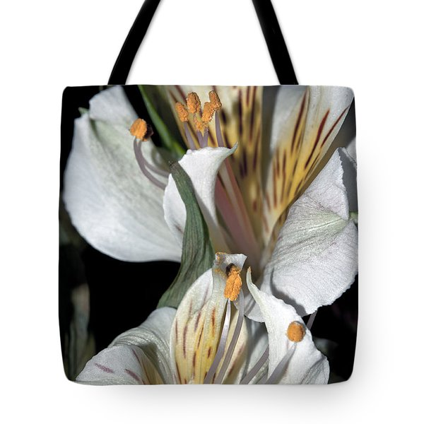 Tote Bag featuring the photograph Beauty Untold by Tikvah's Hope