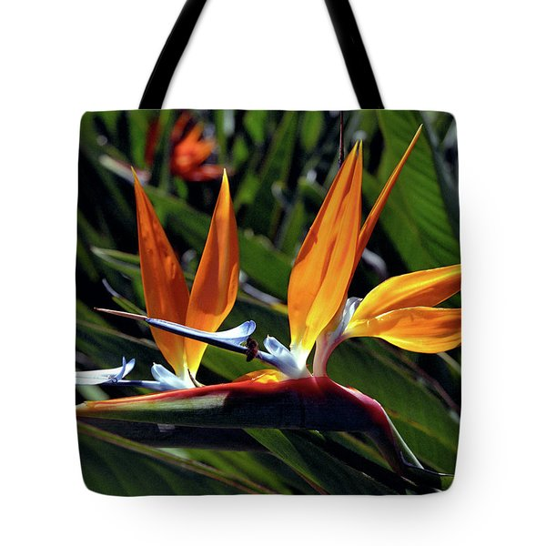Bee And Bird Of Paradise Tote Bag by Kevin Smith