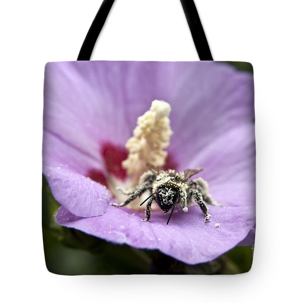 Bee Covered In Pollen  Tote Bag by Jeannette Hunt