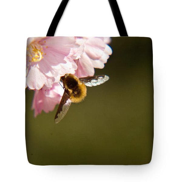 Bee Fly Feeding 4 Tote Bag by Douglas Barnett