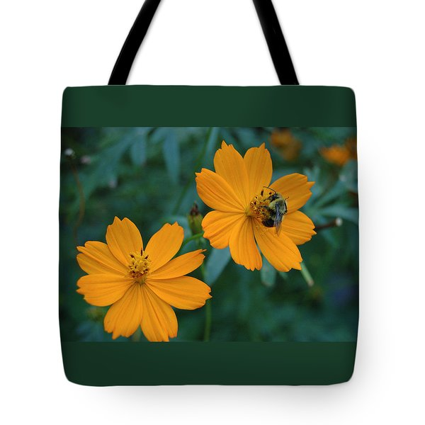 Bee On Cosmos Flower  Tote Bag