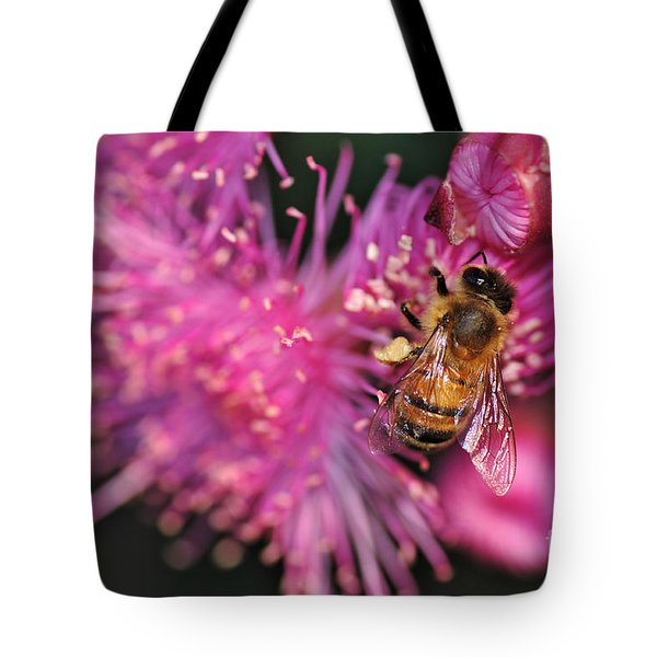 Bee On Lollypop Blossom Tote Bag by Kaye Menner