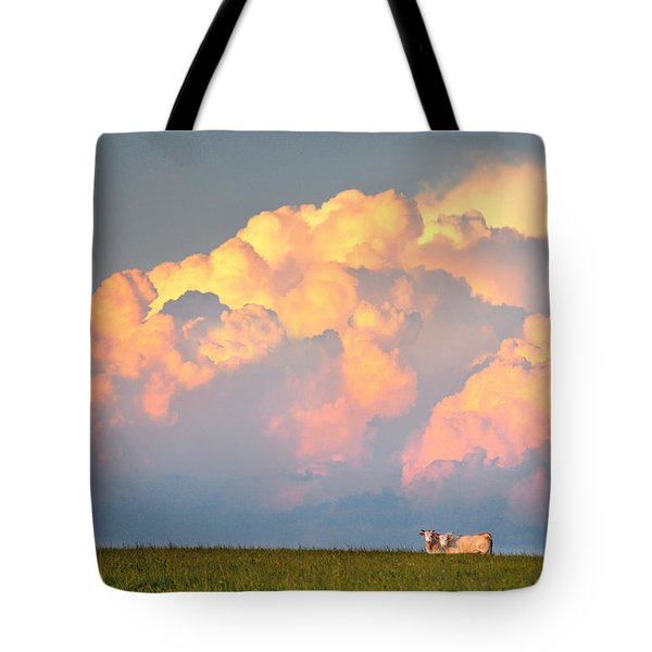 Tote Bag featuring the photograph Beefy Thunder by Brian Duram