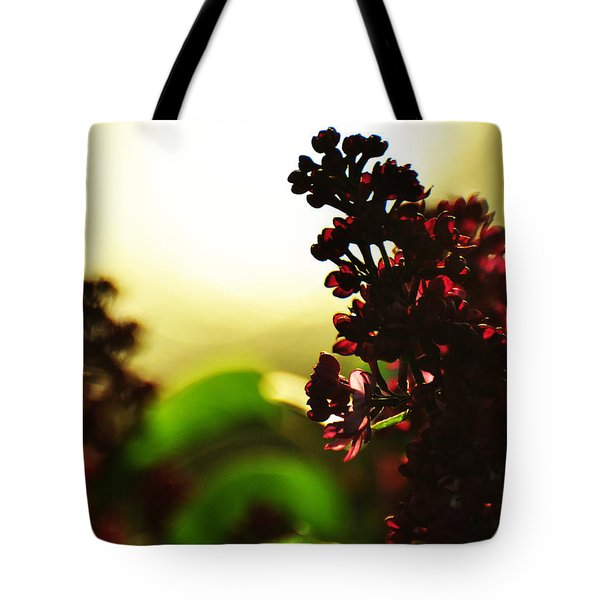 Between Me And The Sun Tote Bag by Rebecca Sherman