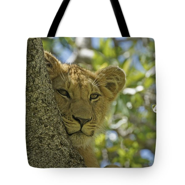 Biding My Time Tote Bag by Michele Burgess