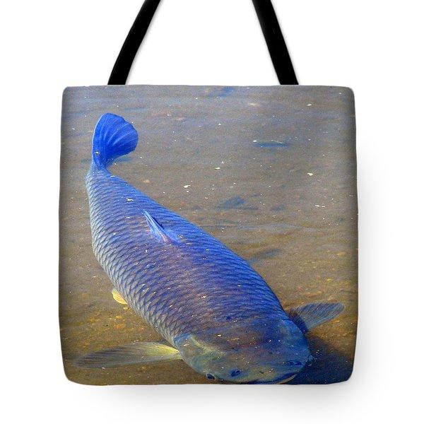 Big Blue Carp Tote Bag