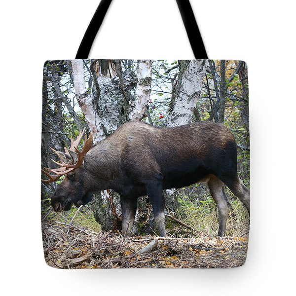 Tote Bag featuring the photograph Big Body by Doug Lloyd