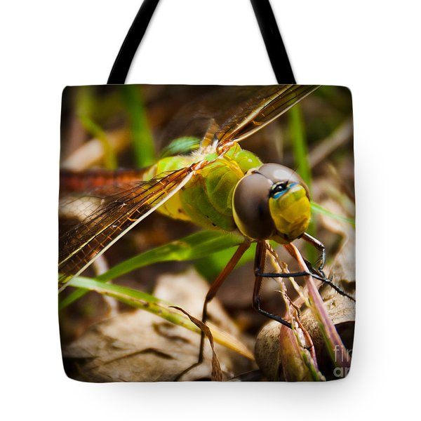 Tote Bag featuring the photograph Big Brown Eyes by Cheryl Baxter