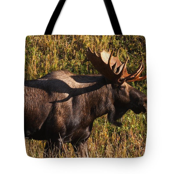 Tote Bag featuring the photograph Big Bull by Doug Lloyd