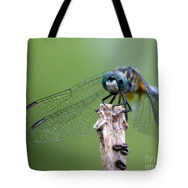 Big Eyes Blue Dragonfly Tote Bag by Sabrina L Ryan