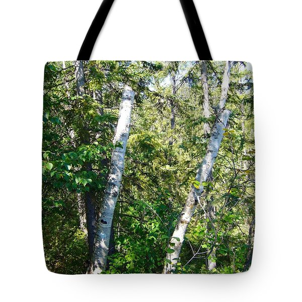 Tote Bag featuring the photograph Birch Trees by Jim Sauchyn