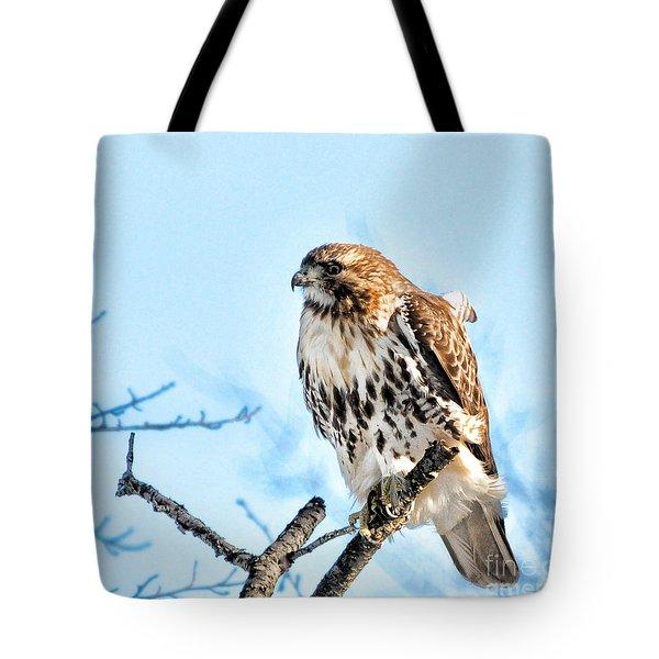 Bird - Red Tail Hawk - Endangered Animal Tote Bag by Paul Ward