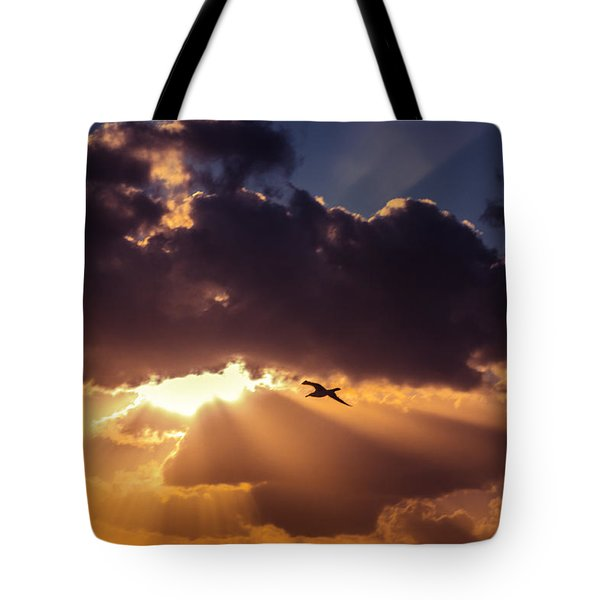 Bird In Sunrise Rays Tote Bag