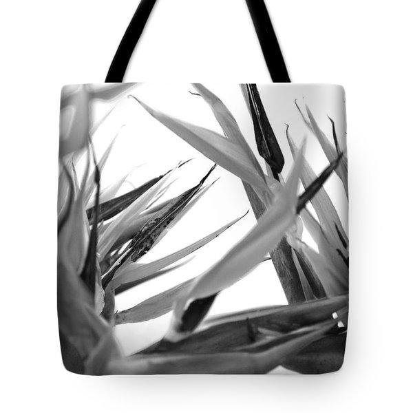 Bird Of Paradise  Tote Bag by Sumit Mehndiratta