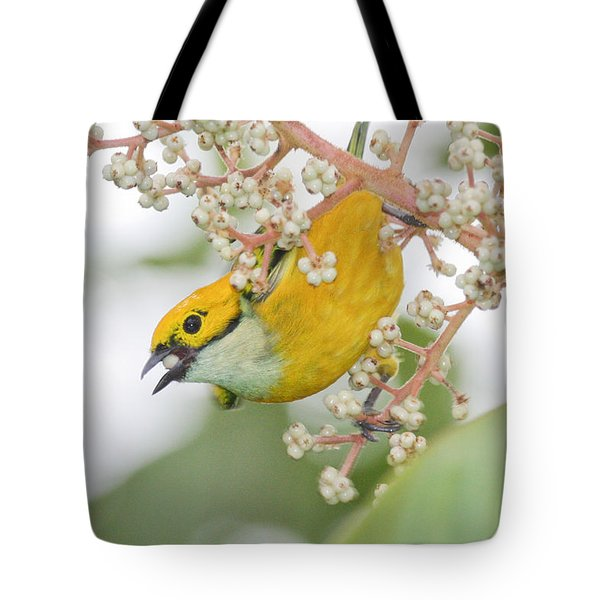 Bird With Berry Tote Bag